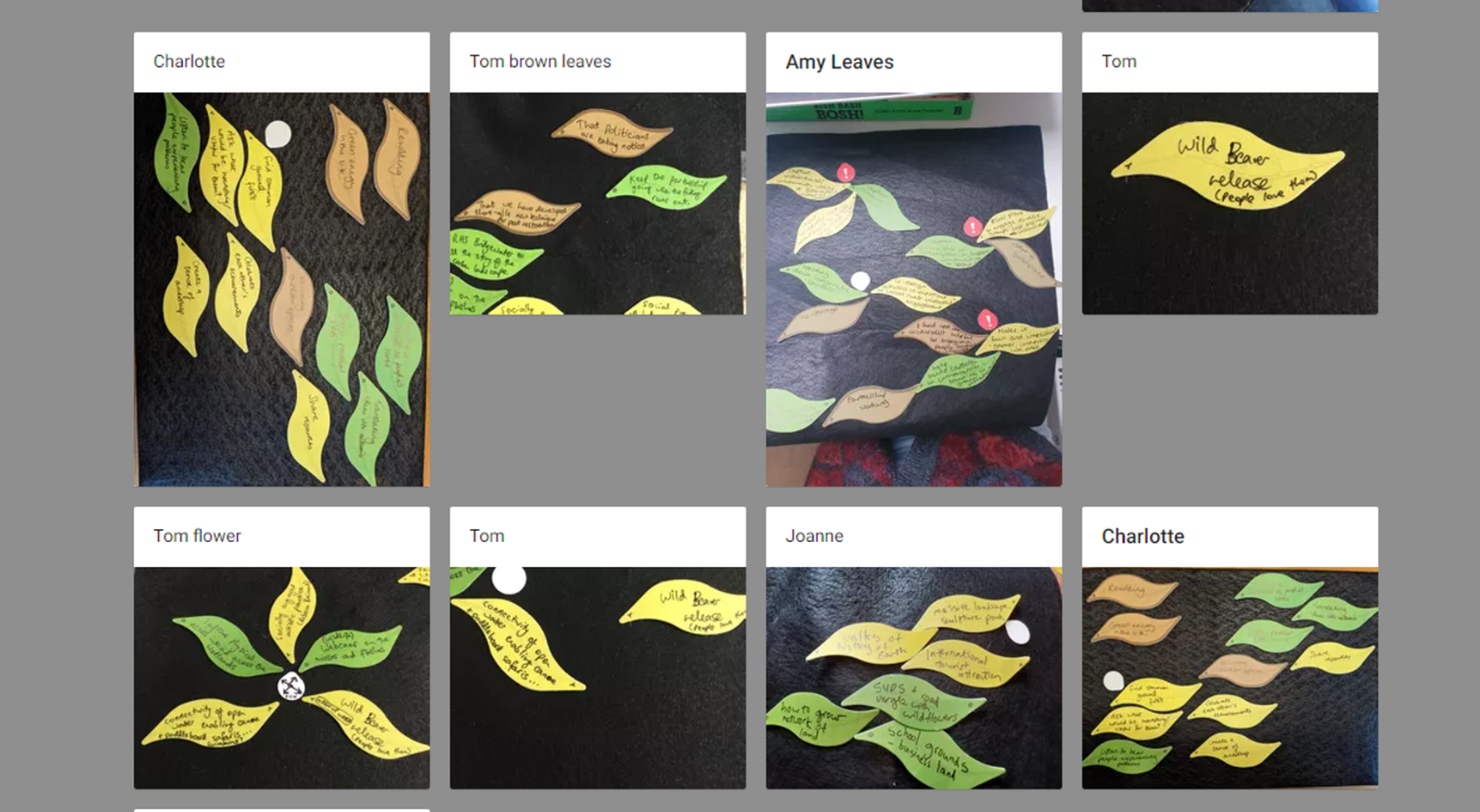 Shows several Ketso Connect images on a padlet